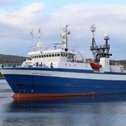 Услуги по выполнению морских геолого-геофизических работ фото