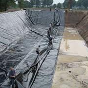 Помощь фермерам во всех областях управления молочной фермой MAS Agro фото