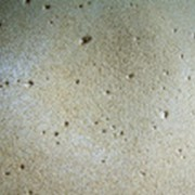 Дигидрокверцетин-сырец фото