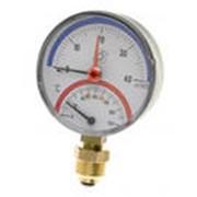 Термоманометр Watts радиальный TMRA фото
