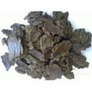 Жмых подсолнечный (низкопротеиновый) фото