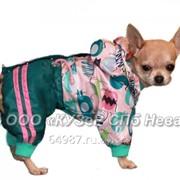 Комбинезон для собаки Куртка-брюки