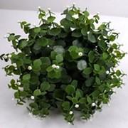 Искусственный шар из травы с белыми ягодами, d 30 см фото
