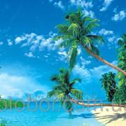 """Фотообои """"Гавайские острова 196х350 (20Л)"""" Ника 2000000358635 фото"""
