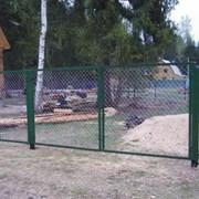 Садовые распашные ворота фото
