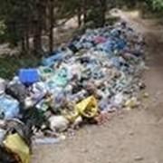 Вывоз мусора самосвалами фото