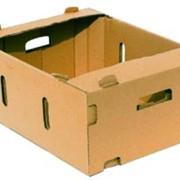 Картонной упаковки для овощей и фруктов фото