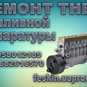 фото предложения ID 12480449