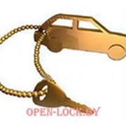 Аварийное открытие автомобильных замков OPEN-LOCK фото