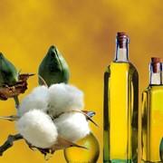 Экспорта хлопкового масла из Туркменистана