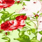 Ткань постельная Бязь 100 гр/м2 150 см Набивная Венера салатовый 3150-3/S041 TDT фото
