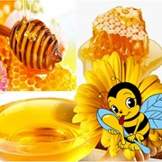 Мед оптом от производителя по Низким ценам, Гаоантия, Качество фото