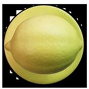 Пукли Лимон пласт. 1уп=12пуклей GREIFF фото