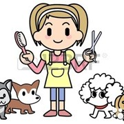 Стрижка домашних животных. фото