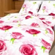 Ткань постельная Бязь 142 гр/м2 220 см Набивная цветной 3152-1/S501 TDT фото