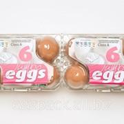 Упаковка для яиц 2x6 ВК (до 90 гр) пр-во Австрия фото