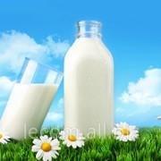 Пищевые добавки для молочной промышленности фото