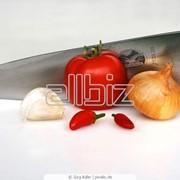Ножи с фиксированным лезвием фото