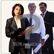 фото предложения ID 17909465