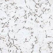 Настенная клеевая пробка Corksribas, DECORK, Condor Snow (600х300х3 мм) упак. 1,98 м2 фото