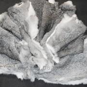 Шкура кролика-цвет сильвер фото