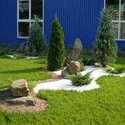 Проектирование ландшафта сада. Ландшафтный дизайн фото
