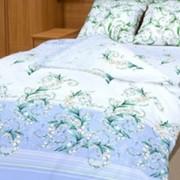 Ткань постельная Бязь 100 гр/м2 220 см Набивная цветной/S066 TDT фото
