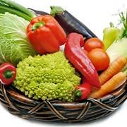 Овощи зеленые. Продукты плантаций и полей. Фрукты, овощи и грибы консервированные в жестяных, стеклянных банках и других упаковках, ягоды, сладкие бахчевые культуры, хмель. фото