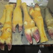 Ноги говяжьи обработанные замороженные фото