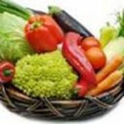 Овощи фрукты фото