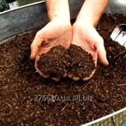 Органические удобрения фото