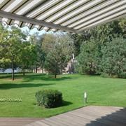 Озеленение сада и дизайн Киев, работы по озеленению участка фото