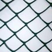 Пластиковая сетка Белрегионснаб С50х74/2,5х20 фото