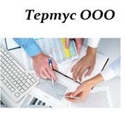 Анализ ведения бухгалтерского и налогового учета на предприятии, консультирование по оптимизации. фото