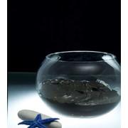 Грязь бальнеологическая «Сестрорецкая» фото