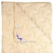 Одеяло Billerbeck Наталия облегчённое 0104-21 01 фото 56418996b08a8
