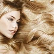 Окрашивание волос в Караганды фото