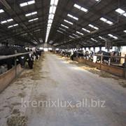 Коровники ,строительство Проект составлен и реализован фирмой«Brunnthaller» фото