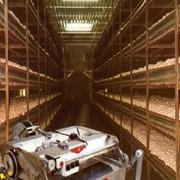 Оборудование для загрузки, распределения и выгрузки компоста в металлических стеллажах при выращивании шампиньонов фото