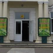 Сити-Лайты г.Котовск фото