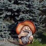 Боровичок-лесовичок фото