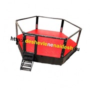 Восьмиугольный ринг на помосте (диаметр 8м, высота помоста 1м) 203 фото
