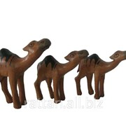 Сувенир Верблюд ANL 317 фото