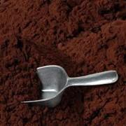 Какао-порошок алкализированный фото