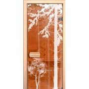 Дверь для сауны АКМА Арт-серия GlassJet ЛЕС-2 7х19 (коробка липа) фото