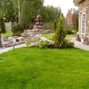 Озеленение сада Кишиневе фото