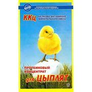 """Белково-витаминно-минеральный концентрат """"ККЦ для цыплят"""", 0,8 кг фото"""