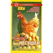 """Кормовой концентрат """"ККН для кур-несушек"""", 0,8 кг фото"""