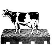 Оборудование для убоя скота фото