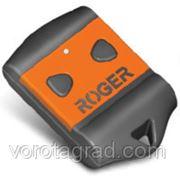 Пульт 2-х канальный ROGER H80/TX22 фото